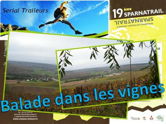Sparnatrail 2014 - Balade dans les vignes (Epernay - dép51 - 15/32/57km - Dim09/11/2014)