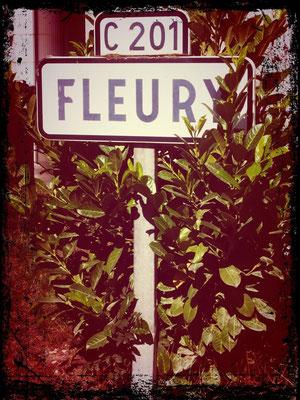 Sortie à Fleury avec JPh (dép80 - 17,5km - Sam22/08/2015)