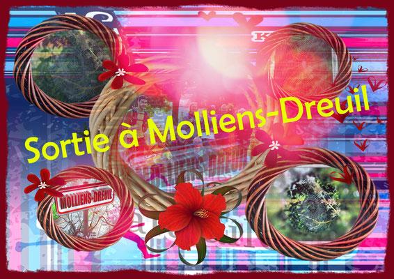 """""""Pêle-mêle"""", sortie à Molliens-Dreuil avec JPh (dép80 - 17km - Sam07/09/2019)"""