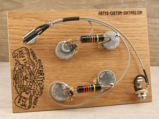 ES-339 WIRING HARNESS  BUMBLEBEE PREWIRED KIT Arty's Custom Guitars