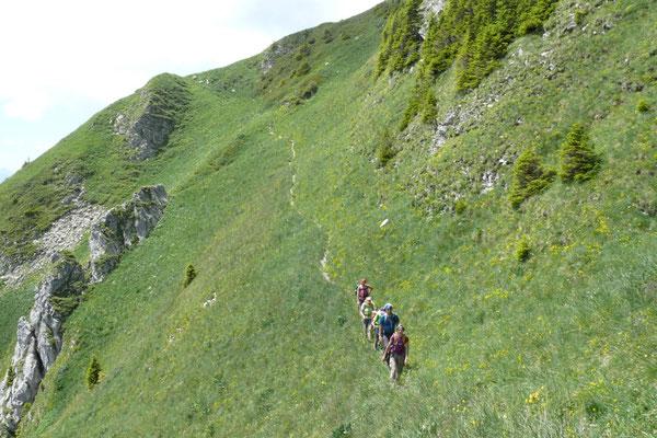 Steile Grastraverse