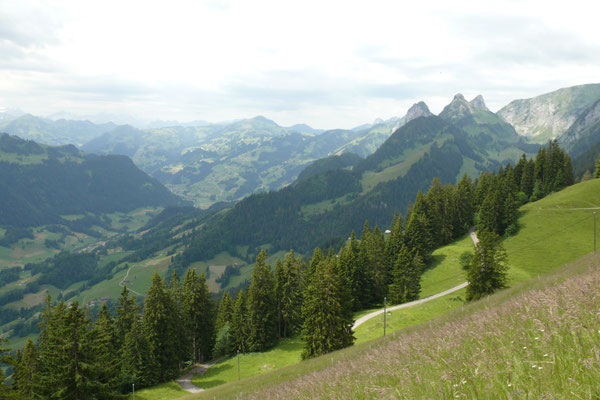 Blick ins obere Simmental