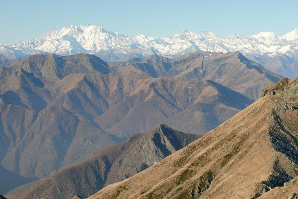 Blick vom Gridone zur Monte Rosa