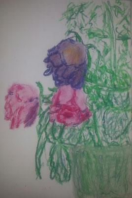 Rosa rosae am Verblühen Pastellkreide auf Papier 10 x 15  100,- mit Rahmen