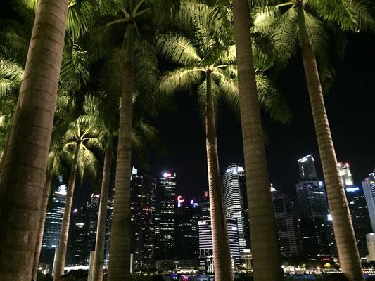 Marina Bay Waterfront - ein neues, künstlich angelegtes Stadtviertel.