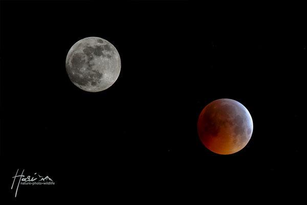Mond - Blutmond