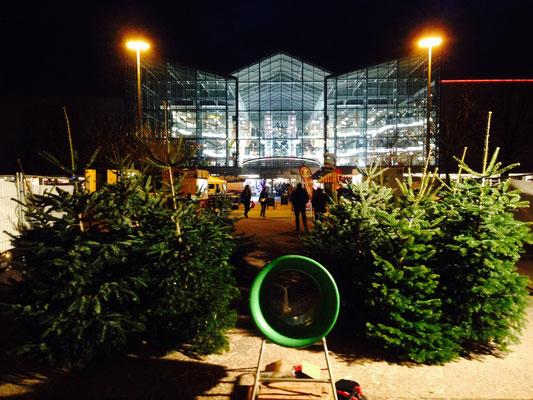 Weihnachtsbaum Verkauf am Eslarner Weihnachtsbaum Hof
