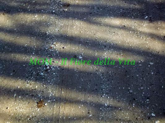 texture 063