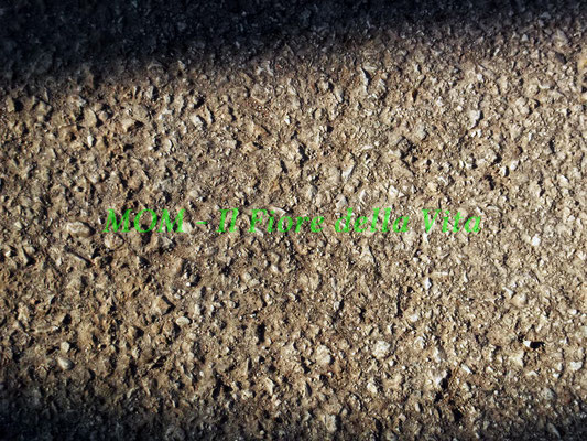 texture 066