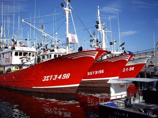 barco pesquero de bonito