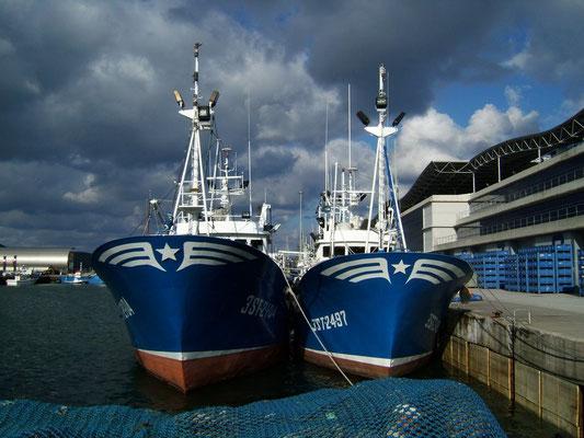 barcos pesqueros de anchoa