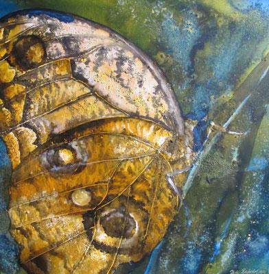Schmetterling, 2012, 60 x 60 cm, Mischtechnik auf Leinwand