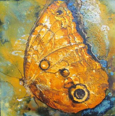 Schmetterling; 2012, 60 x 60 cm, Mischtechnik auf Leinwand