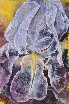 Blaue Iris, 2020, 100x150 cm, Mischtechnik auf Leinwand
