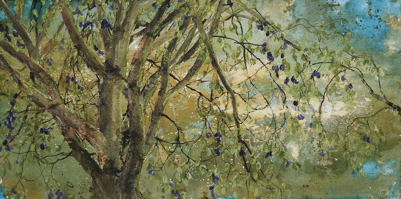Zwei Pflaumenbäume, 2019, 90 x 180 cm, Tusche und Acryl auf Papier auf Leinwand