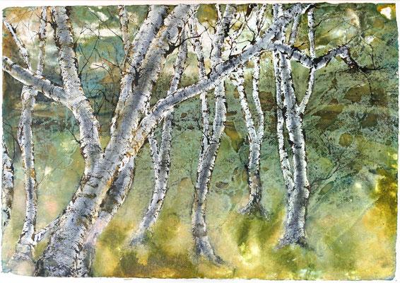 Birkenhain im Vorfühling, Tusche und Acryl auf handgeschöpftem Papier, 100 x 140 cm, 2021