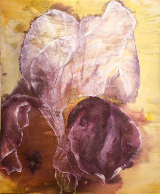 Große Iris, 2020, 120x150 cm, Mischtechnik auf Leinwand