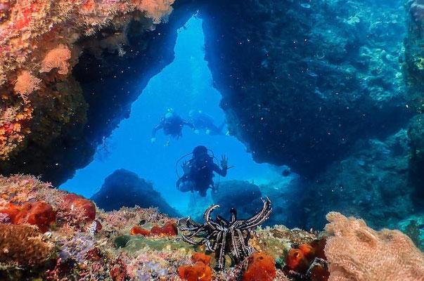 Dive-through at North Rock