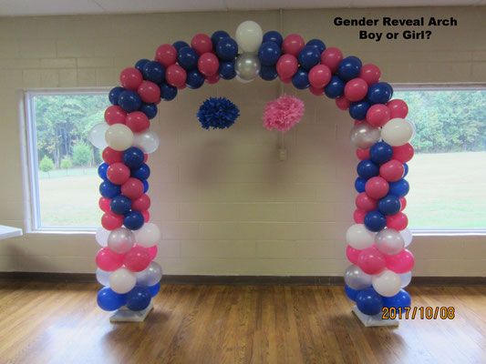 Gender Reveal Baby Boy Girl Shower Air-Filled Balloon Arch Royal Blue Hot Pink Silver White