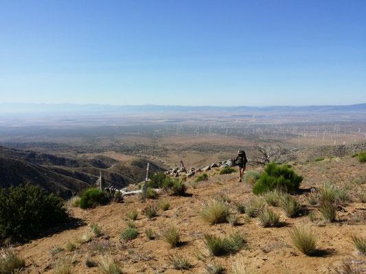 Durch Windfarmen nach Tehachapi