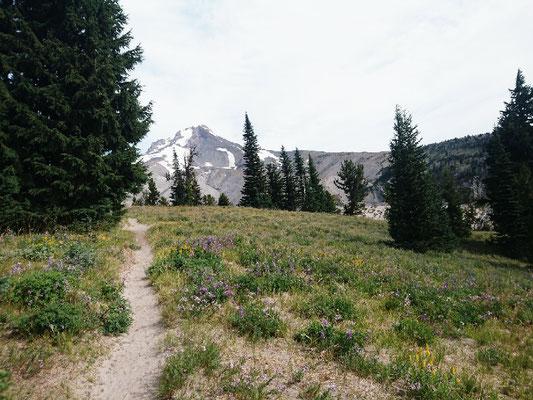 Mt. Hood von der Südseite