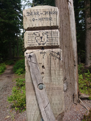 Das Bär-o-meter