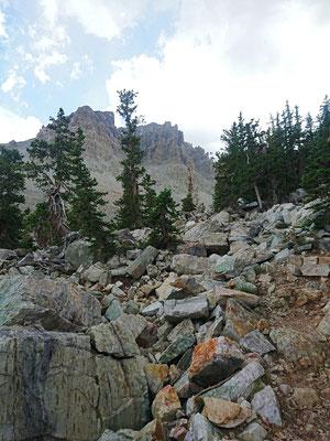 Aufstieg zum Wheeler Peak