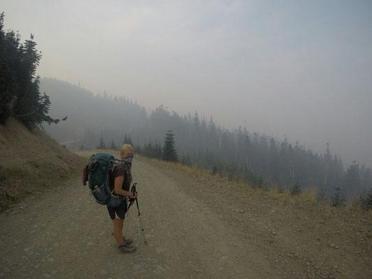 Rückzug über die Forest Roads
