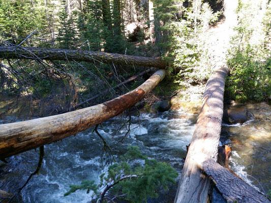 Flussquerung über Baumstämme