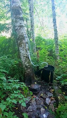 Mysterium im Urwald: die Dusche an der heißen Quelle
