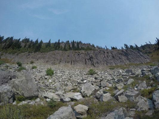 Aufstieg zur Mt. Rainier Wilderness