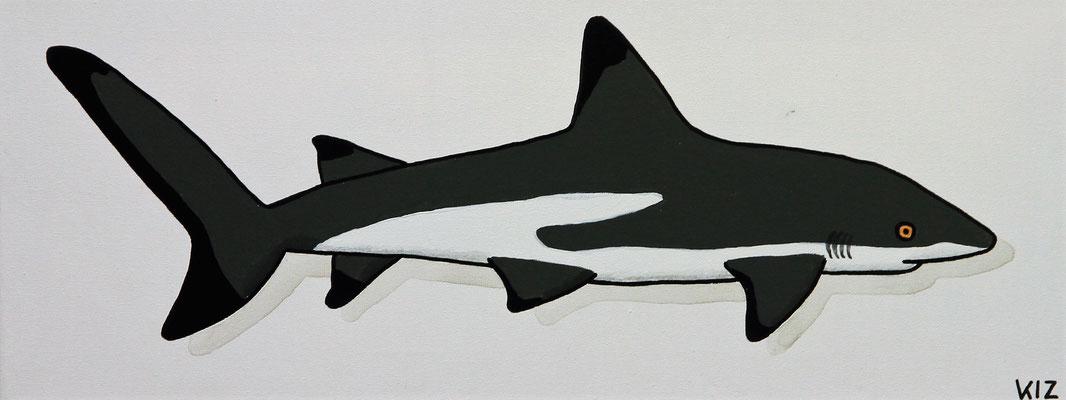 Schwarzspitzenriffhai - Auf diesen Acrylgemälde ist ein Schwarzspitzenriffhai zu sehen.