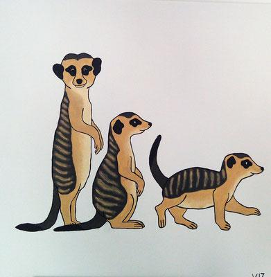 Drei Erdmännchen - Dieses Acrylgemälde zeigt drei Erdmännchen.