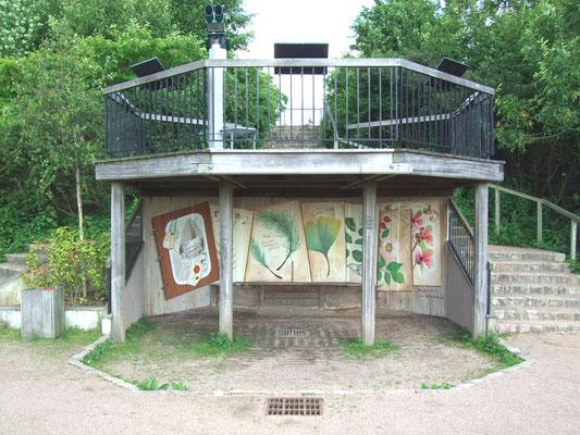 Décor peint planches botaniques- Rosny sous bois