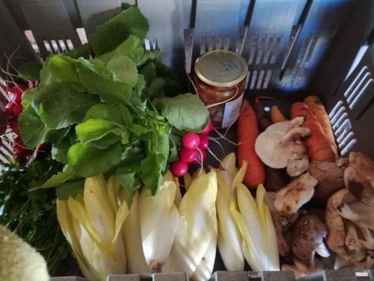 photo d'un autre panier AMAP: endives, carottes, shiitakés, radis et coulis de tomates