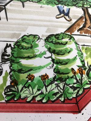 Ausschnitt aus einem Gartenplan