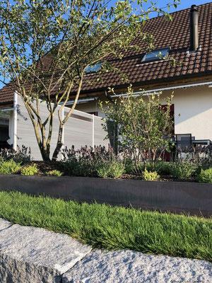 bepflanzter Stahlrahmen eingebettet im Rasen