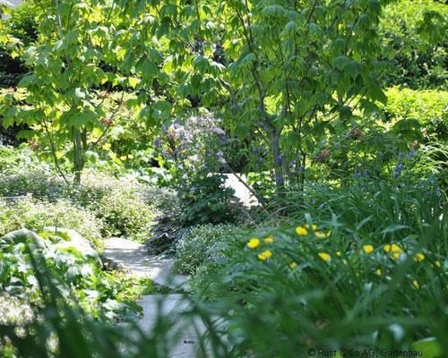 üppige Staudenbepflanzung