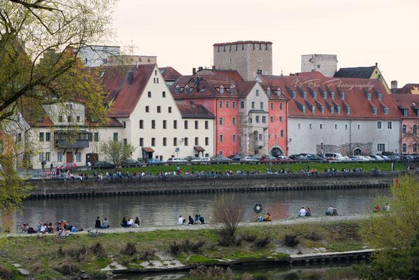 Weinlände und Donau, Regensburg.