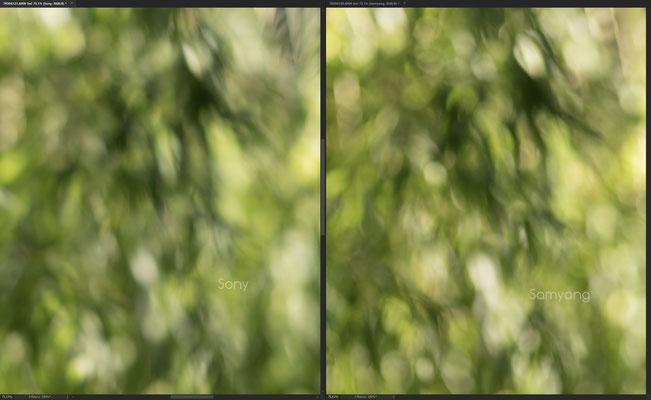 Samyang AF 85mm 1.4 FE vs. Sony 85mm 1.4 GM, Bokeh @f/1.4 #2 Crop