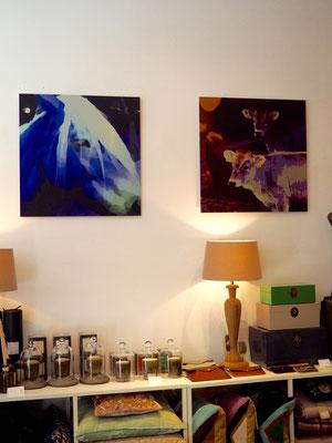 digitale fotokunst; Pferd; Blue Beauty; Lila Kühe; digital art; Carolin Wolfram von Wolmar; Galerie Düsseldorf; Fotokunst kaufen; limitierte Editionen; Kunst