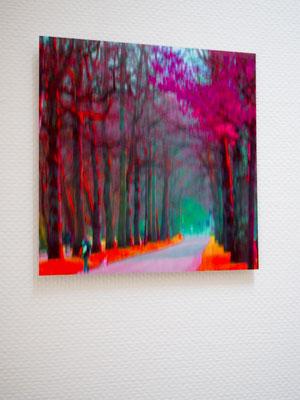 digitale fotokunst; Im Park; digital art; Carolin Wolfram von Wolmar; Galerie Düsseldorf; Fotokunst kaufen; limitierte Editionen; Kunst