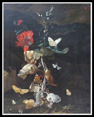 """Sottobosco"" Rachel Ruysch 1664-1750, (Umkreis)  59cm x 41cm - VERKAUFT"