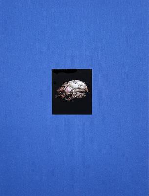 """Heinz Zander - """"Gemälde"""", 2014, 228 Seiten, 31,5x24,5cm, mit zahlreichen Abb. und Texten von Gerd Lindner und Rolf Günther  - 48 EUR"""