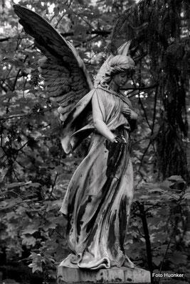 Melatenfriedhof 2011
