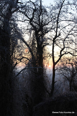 Sonnenuntergang 03-02-2009