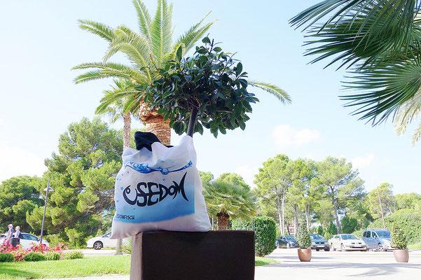 Unsere Strandtasche macht nicht nur auf Usedom was her