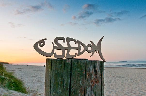der Usedomfisch im Sonnenuntergang