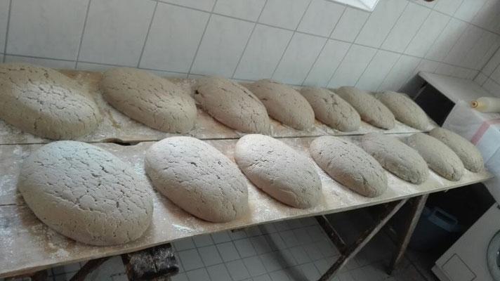 geformte Brote sind bereit zum Backen...........