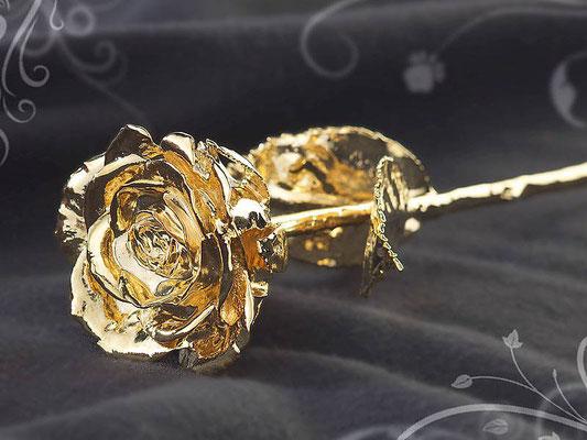 Die Goldene Rose der Stadt Tulln